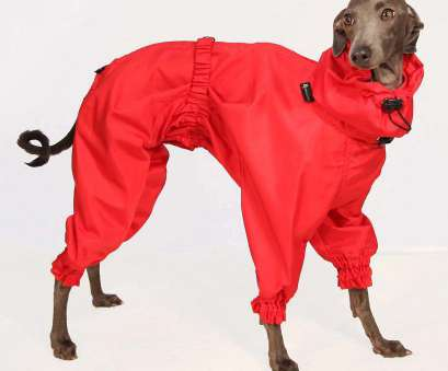 Sofa Dog Wear ... SOFA, Wear, Rain Jacket 5 Sinnvoll Sofa, Wear